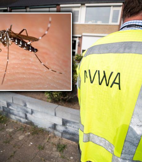 Buurt vreest ziekmakende muggen bij autobandenbedrijf in Montfoort, minister om hulp gevraagd