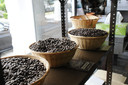 Koffie Noé is al sinds 1946 een begrip in Landen en ver daarbuiten.