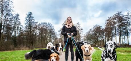 Honden krijgen steeds minder de ruimte: 'Niet alle gebruikers van recreatiegebieden zijn blij met honden'