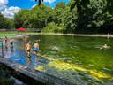Zonnebaden en zwemmen in zwemvijver Boekenberg.