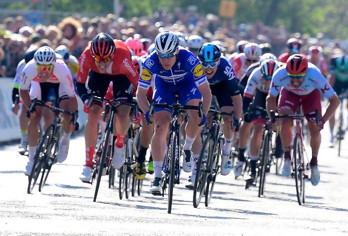 Fabio Jakobsen sprint in de 107de Scheldeprijs naar de winst.