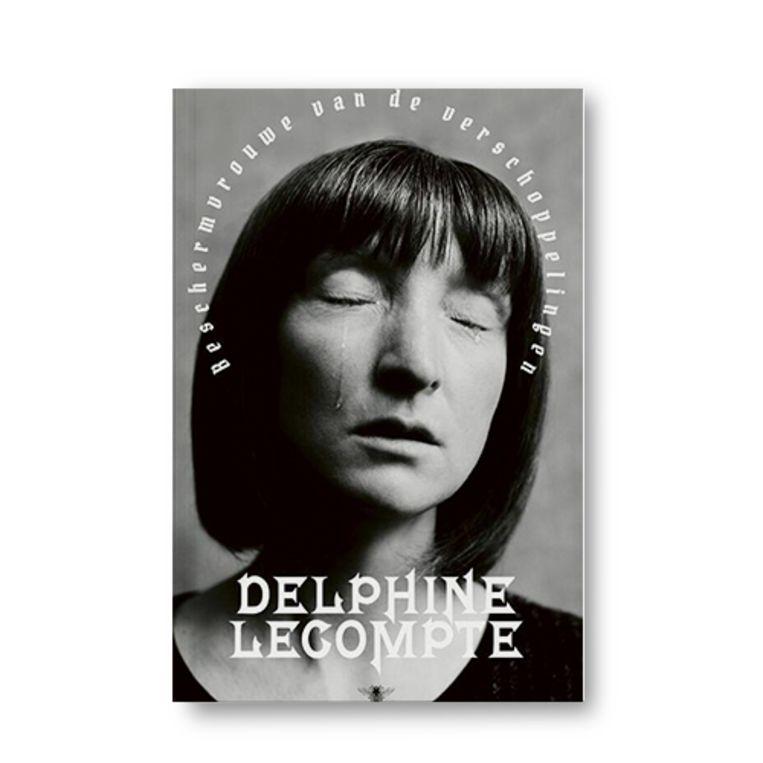 Beschermvrouwe van de verschoppelinge - Delphine Lecompte Beeld Uitgeverij De Bezige Bij