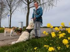 Wilma zet zich in voor huisdieren als hun baasjes dat financieel niet zelf kunnen