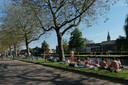 Op een zonnige dag ligt de grasstrook van de Oostsingel vol Delftenaren die wat verkoeling zoeken.