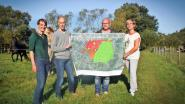 Groen blijft pleiten voor duurzame visie voor Kalvenne
