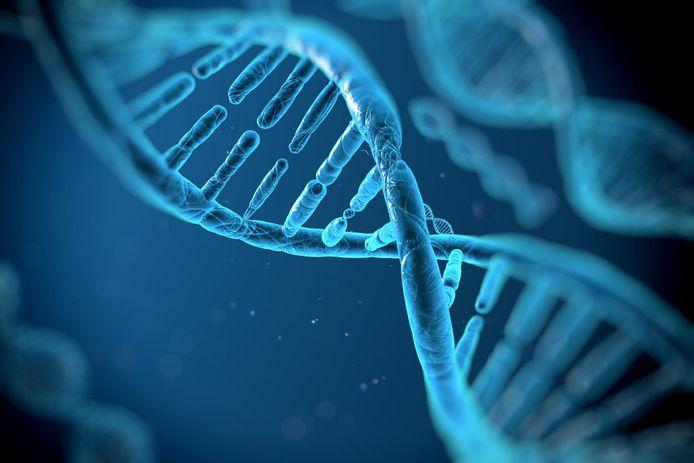 Een DNA-molecule.