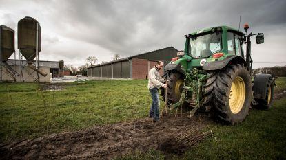 25.000 nieuwe boompjes en plantjes dankzij 'Boeren planten bij Boeren'