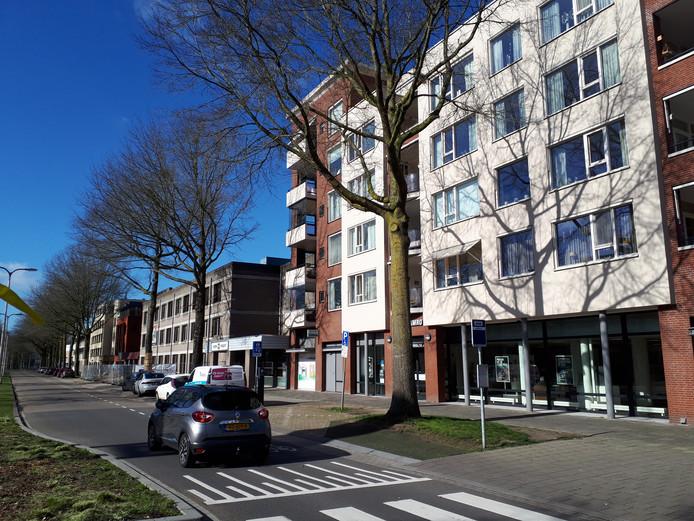 Bewoners van dit appartementencomplex krijgen hun zin. De twee grote moeraseiken voor hun deur mogen worden gekapt.