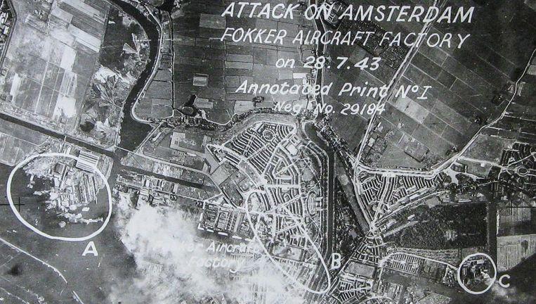 Nieuwe vindplaatsen: Uitdammer en Holysloter Die, Nieuw-Sloten, Amstelglorie-Overamstel, Bijlmerweide en De Loper (bij Arena) Beeld -