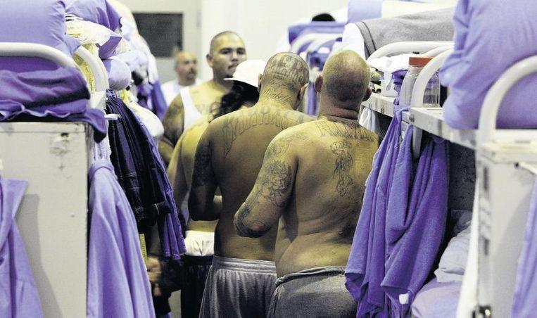 Een tot slaapzaal omgebouwde sportzaal in Mule Creek State Prison, Californië. Beeld getty