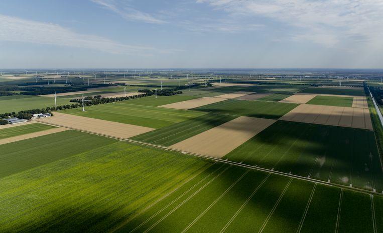 Akkerland en windmolens in Flevoland. Landbouworganisatie LTO wil serieus kijken naar landwinning in de Noordzee. Beeld ANP