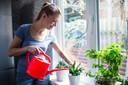 Plant water geven