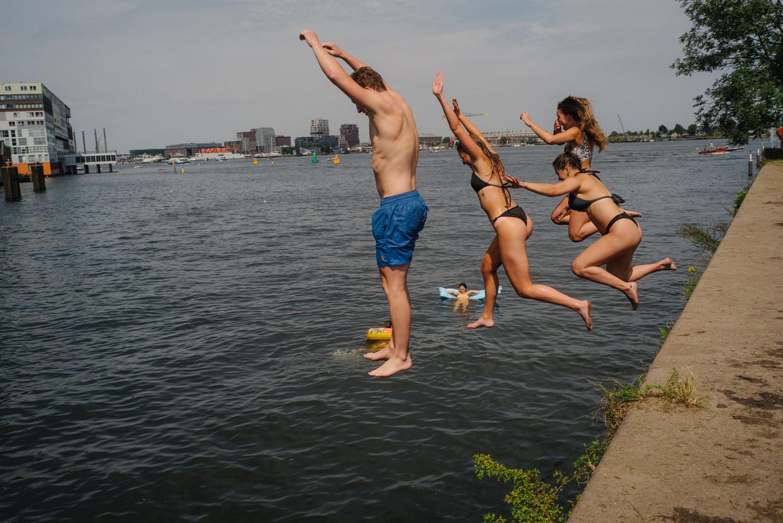 Zwemmen bij Het Stenen Hoofd. Beeld Marc Driessen