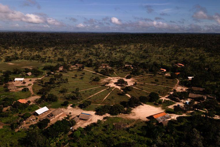 Monte Alegre – of in de taal van de Gavião: Waa Her Cre – ligt aan de rand van het Braziliaanse Amazonegebied.  Beeld Ian Cheibub