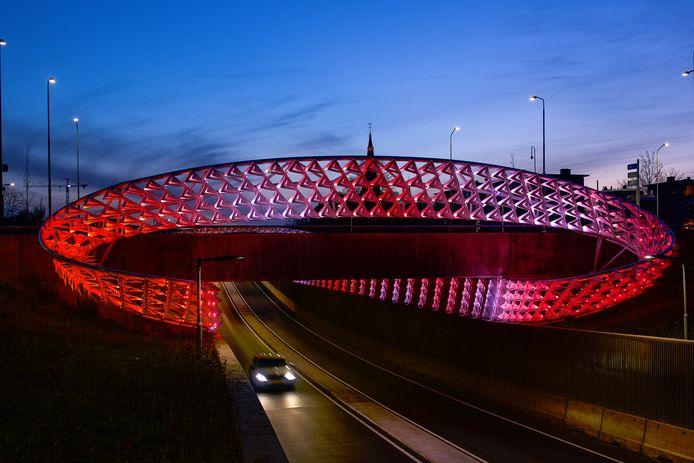 De ongelijkvloerse kruising met kunstwerk De Zwerm op de Montgomerylaan is genomineerd voor de Dirk Roosenburgprijs 2021  in Eindhoven.