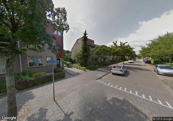 De Dianalaan in Apeldoorn. Foto: Google Streetview
