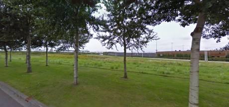Gemeente reserveert terrein voor jeugd in de Reeshof