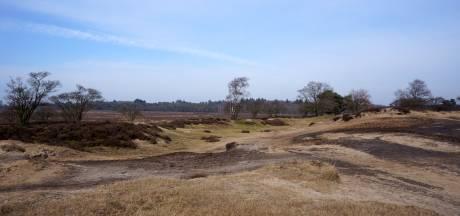Goois Natuurreservaat maakt zich zorgen over tuinafvaldumpingen in de natuur