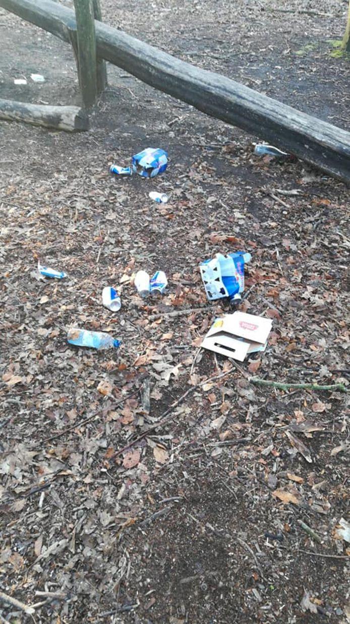 Afval in het bos van de Krankhoeve