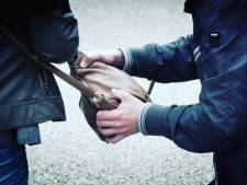 Hoogbejaarde vrouw (90) midden op straat beroofd in Roosendaal: 'Ze bleef geschrokken achter'