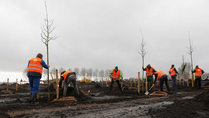 Vrijwilligers planten bomen voor het herinneringsbos, een onderdeel van het Nationaal Monument MH17.