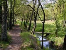 Renkum wil zonnepanelen in Natura 2000-gebied