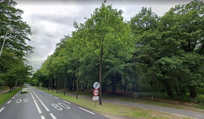 De bomen op het perceel langs de Utrechtseweg moesten plaats maken voor woon-zorgappartementen