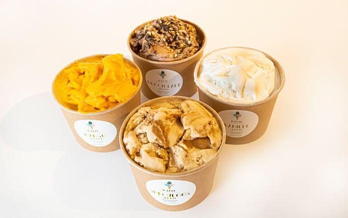 De veganistische ijsjes van IceLab.