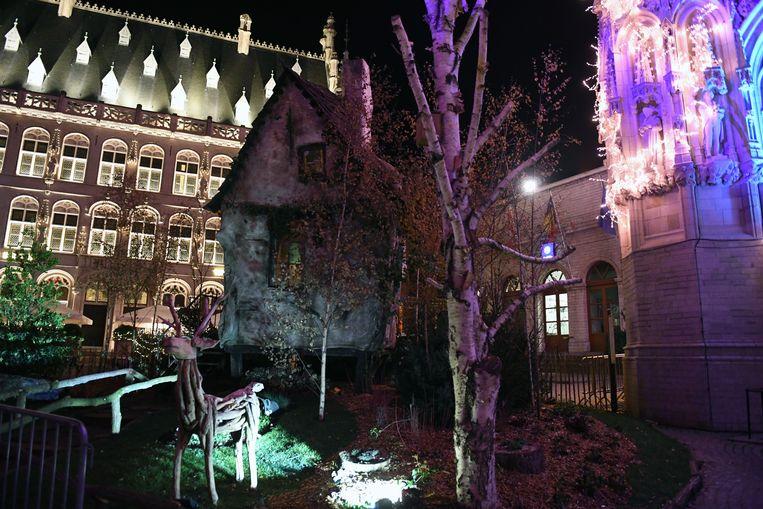 De wintertuin van de Grote Markt was dit jaar uitzonderlijk mooi.