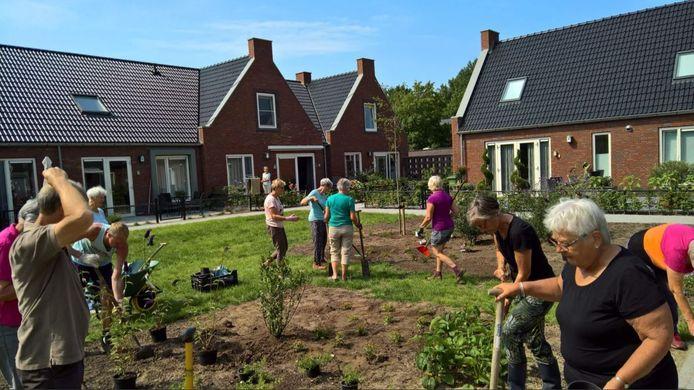 Bewoners van een Knarrenhof (in Zwolle) zijn gezamenlijk bezig in de tuin