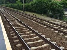 Spoorvernieuwing: drie weekenden geen of minder treinen tussen Roosendaal en Bergen op Zoom