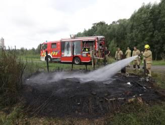 Vogelkijkhut gaat volledig in vlammen op na nieuw geval van brandstichting