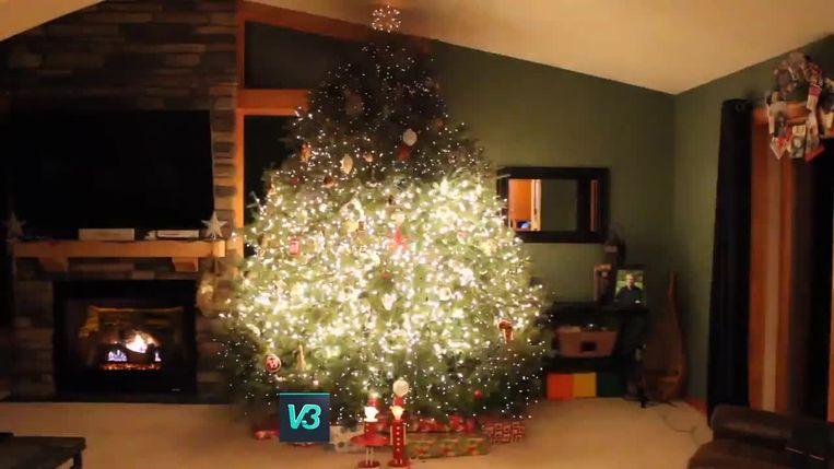 VIRAL3: kerstboom geeft lichtshow.