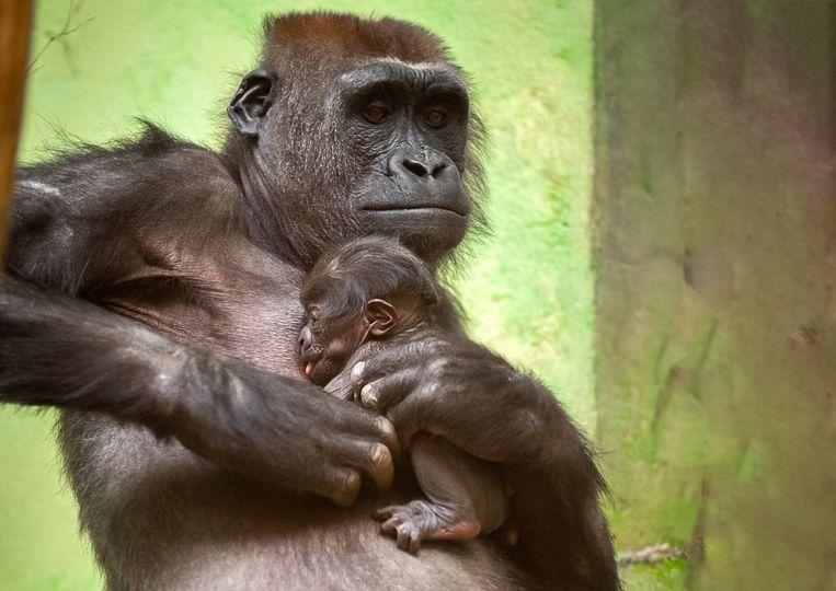 Mama Mayani met haar baby. Beeld Jonas Verhulst