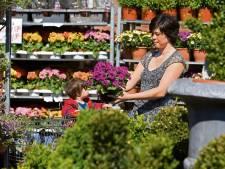Zó help je je planten deze tropische zomer door