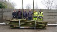 't West-Vlaamse Hart deelt recordaantal wilgenpoten uit