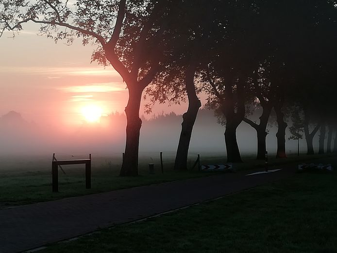 Park Lingezegen, bij de Notenlaan bij Elst. Gemaakt in de vroege ochtend door Helma Pietersma.