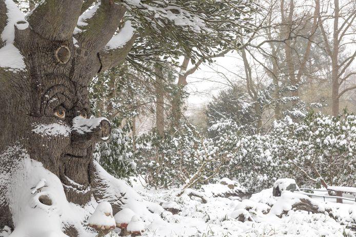 De Sprookjesboom is ook met een dikke laag sneeuw bedekt.