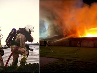 """Verwoestende brand legt loods van 1.500 m² in de as: """"Eén dag eerder tijdens storm en de gevolgen waren nóg zwaarder geweest"""""""