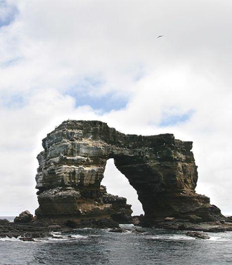 Boog van Darwin op Galápagoseilanden stort in: 'Natuurlijke erosie'