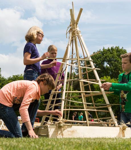 Woodcarversfestival 'hout wel op' bij Lageveld Wierden