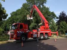 Vooral afgebroken takken en omgewaaide bomen door hevige onweersbuien in de provincie