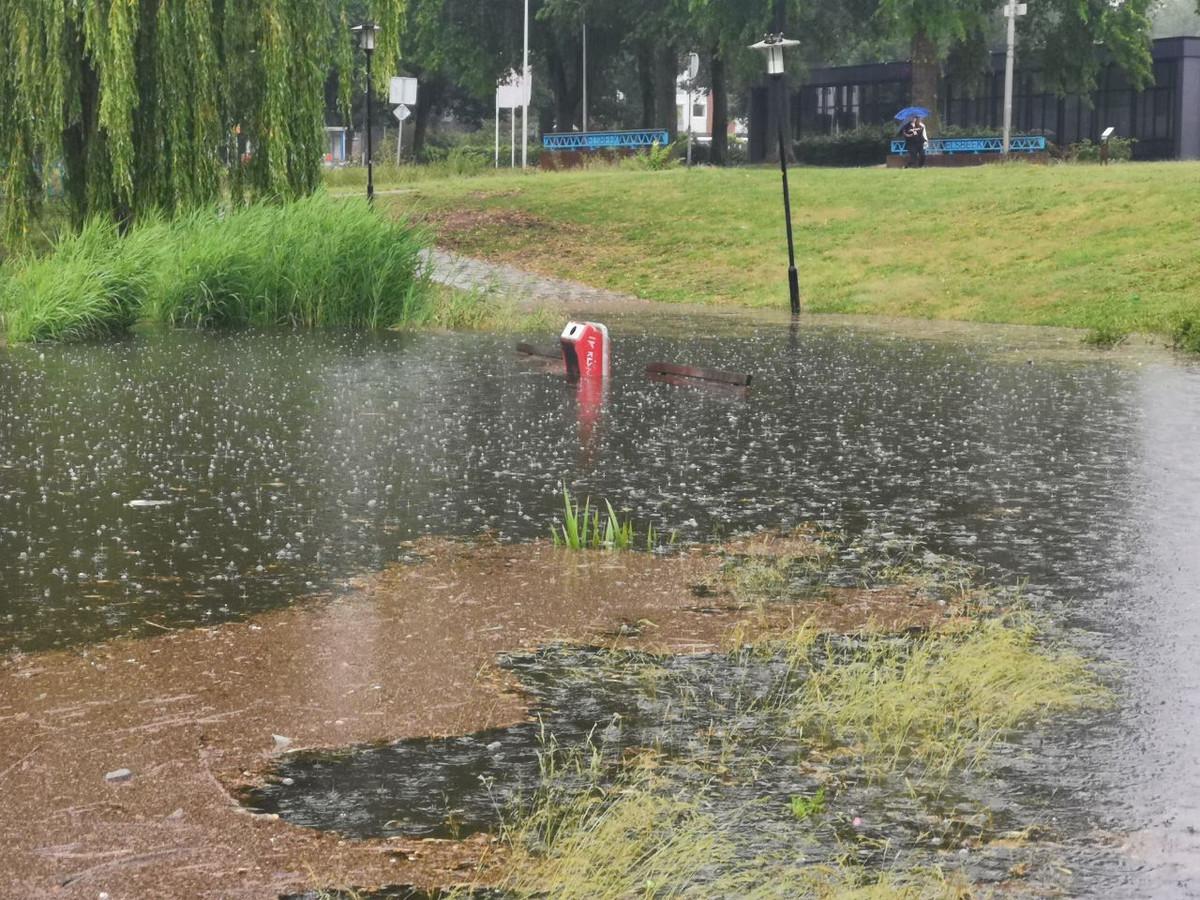 De Swafert Vijver in Hengelo is volledig buiten zijn oevers getreden.