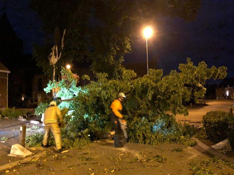 De omgevallen bomen werden vakkundig opgeruimd door de brandweer.