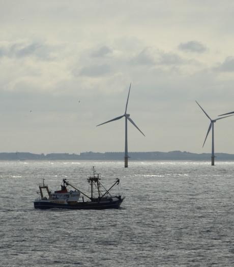 Voor een keertje zijn vissers het eens: de bouw van windparken in Noordzee is rampzalig voor visstand