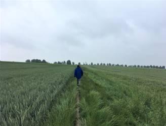 Weekend van de Trage Weg in Maarkedal serveert drie wandelingen met vrije start
