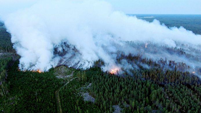 Un vaste feu de forêt a ravagé plus de 300 hectares en cinq jours dans une vallée du nord-ouest de la Finlande.