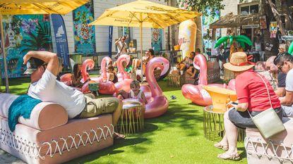 Tussen flamingo's op Holy Beach