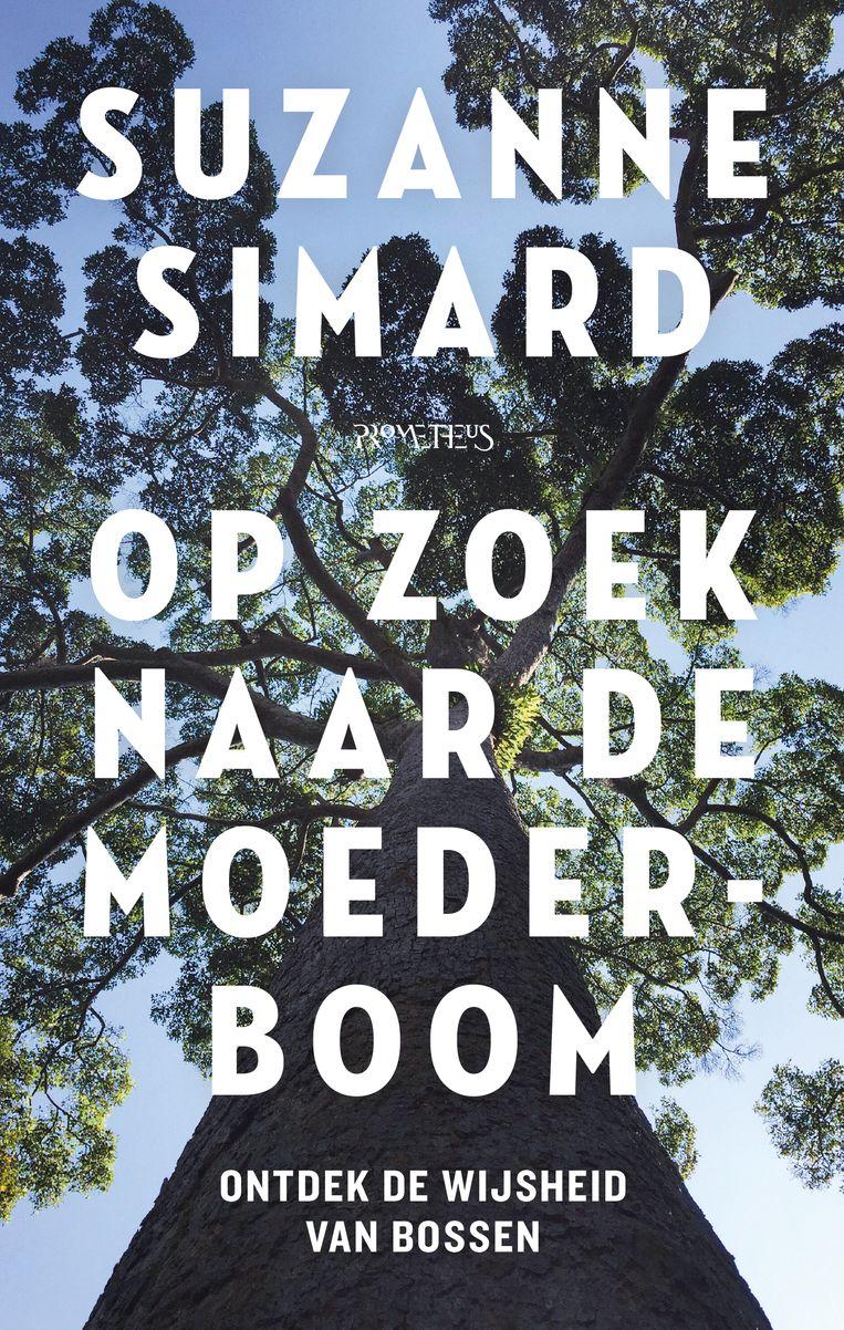 Suzanne Simard, 'Op zoek naar de moederboom', Prometheus Beeld HUMO
