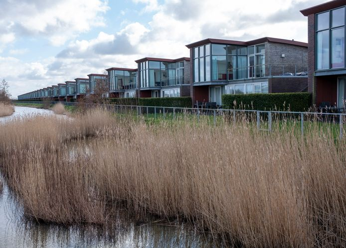 Aan de rand van Waterpark Veerse Meer staan 63 dijkwoningen. De eigenaren steunen het plan van Driestar voor het nieuwe vakantiepark.